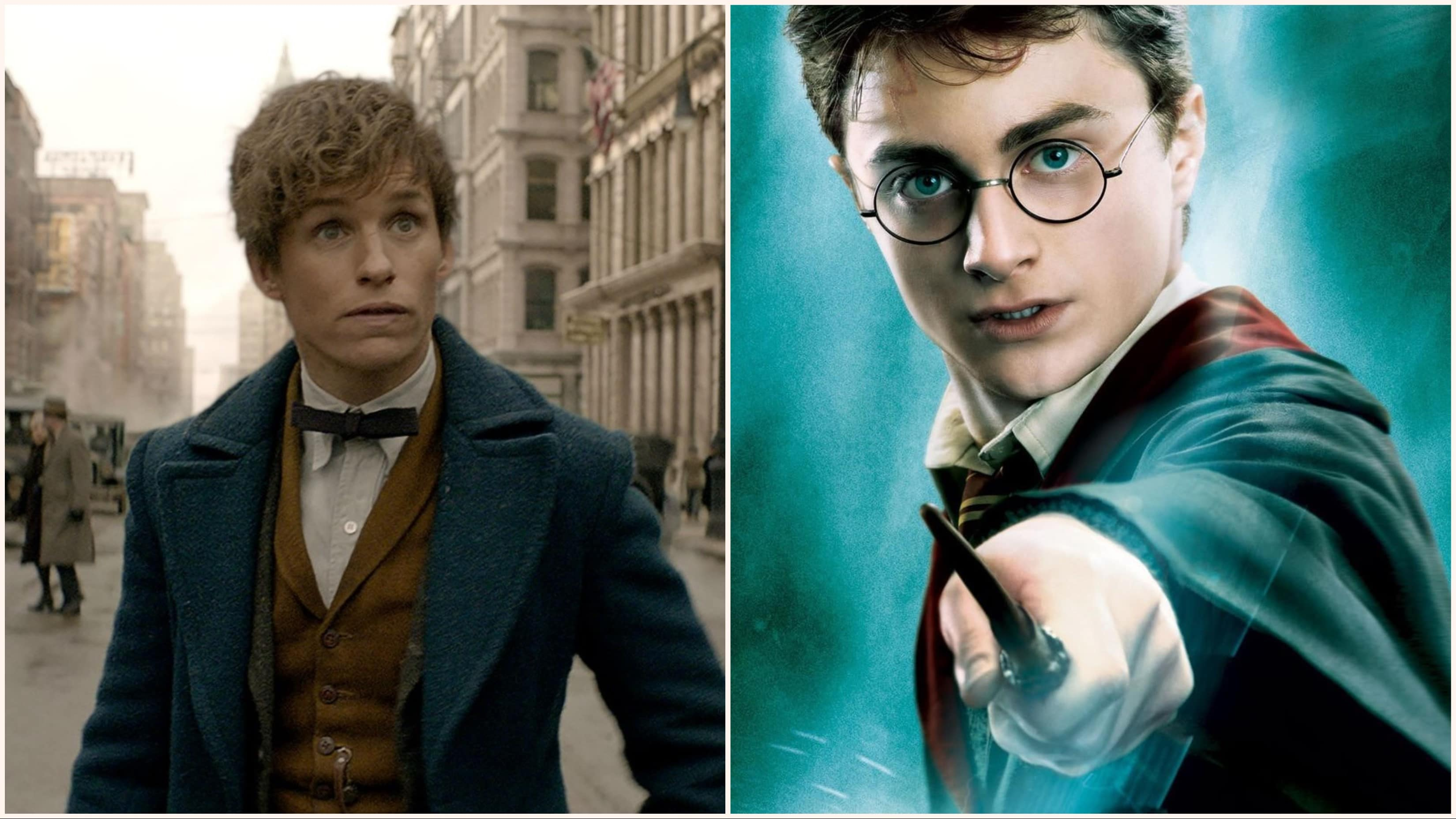 'Fantastic Beasts' Star Talks Major 'Harry Potter' Connection