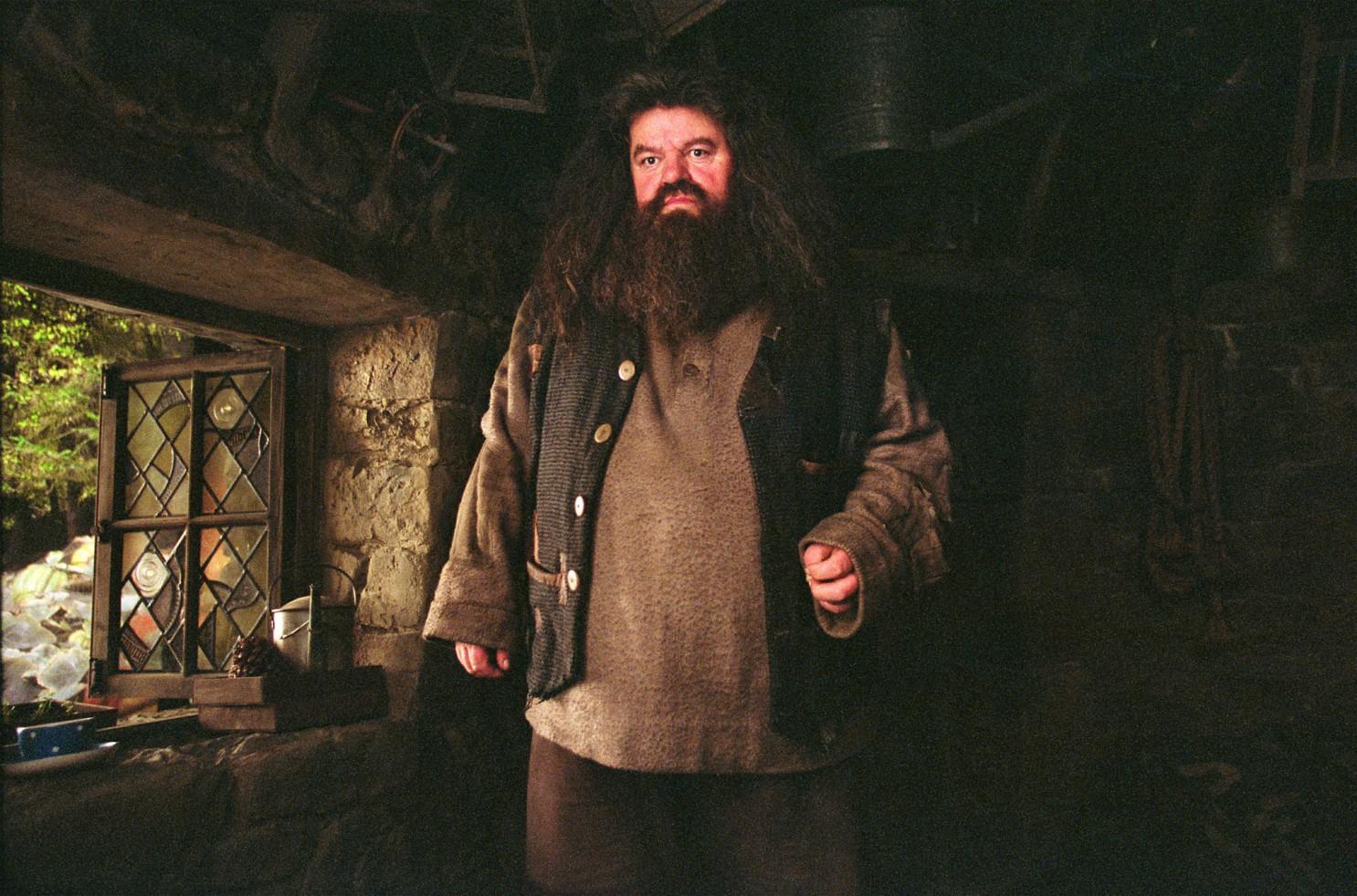 Harry Potter Series Rubeus Hagrid